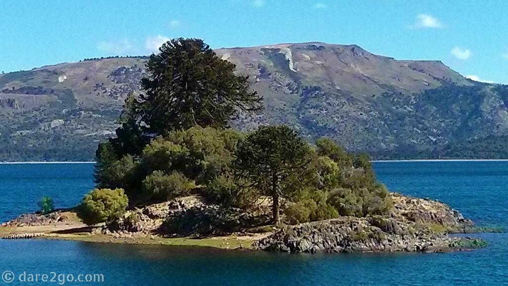 Island in Lago Alumine - it triggered the impression of bonsai in big