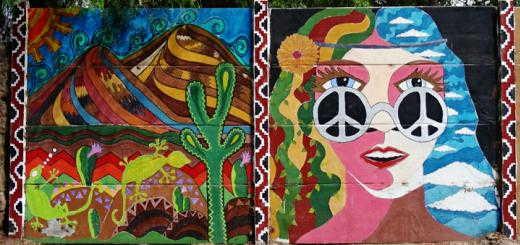 Vicuña: streetart gallery