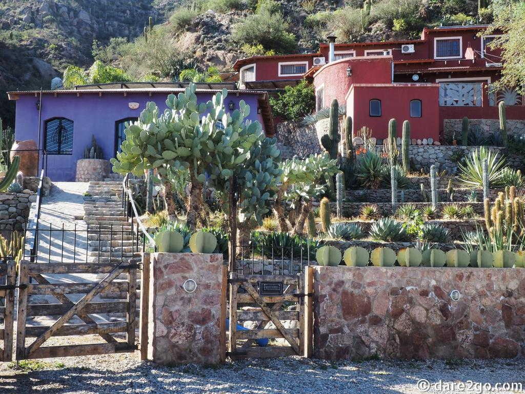Chilecito: the Jardin Botanico Chirau Mita, a cactus garden