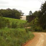 A rural scene with vineyard, west of Antonio Prado in Brazil