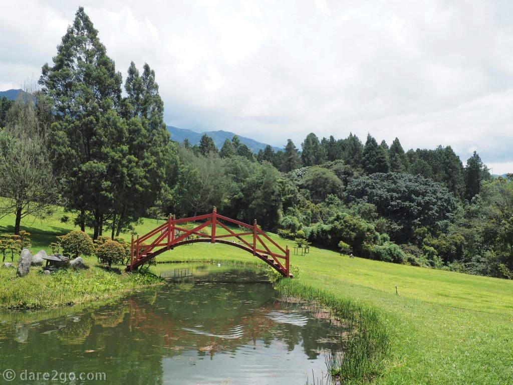 Recinto del Pensamiento: Senda de Oriente is a path through an area dotted with bonsai trees.